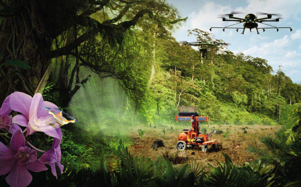 Robots-Nature-Jungle---double-SVJ03HD