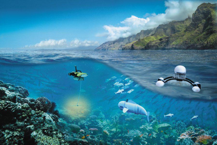 Robots-Nature-Ocean---double-SVJ05HD