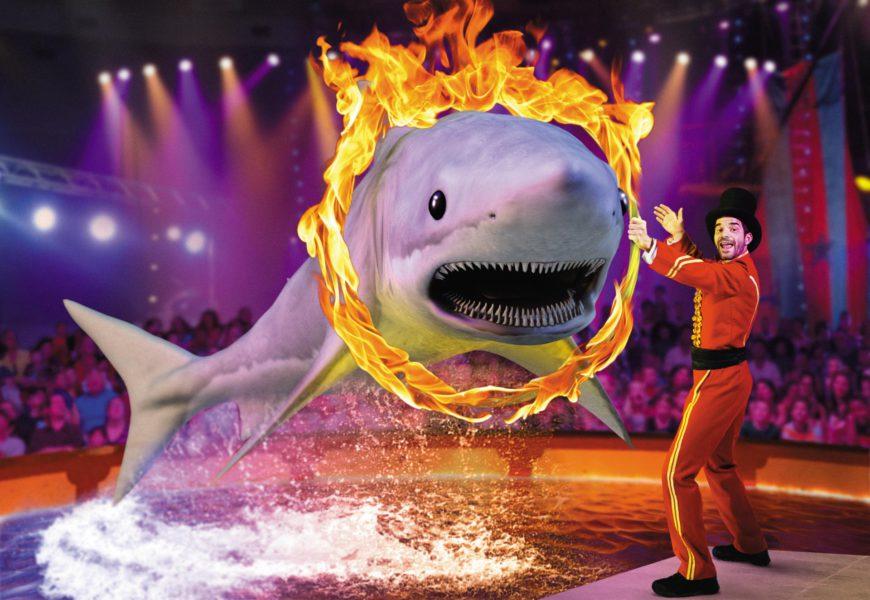 SVJ---ANPF---Requin-cirque-v03HD