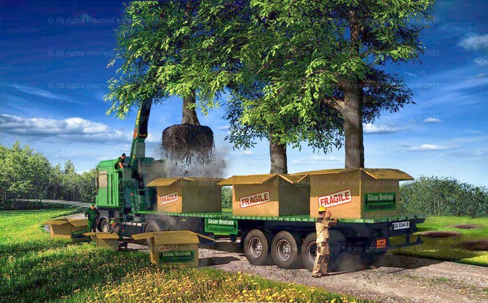 gregcirade.com-SVJ-camion+arbres-v05